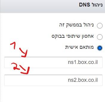 כתובות DNS